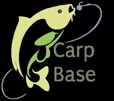 Carp Base