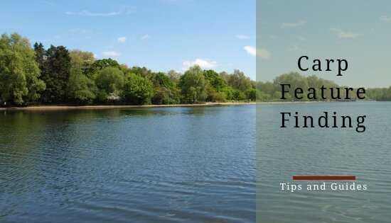carp feature finding
